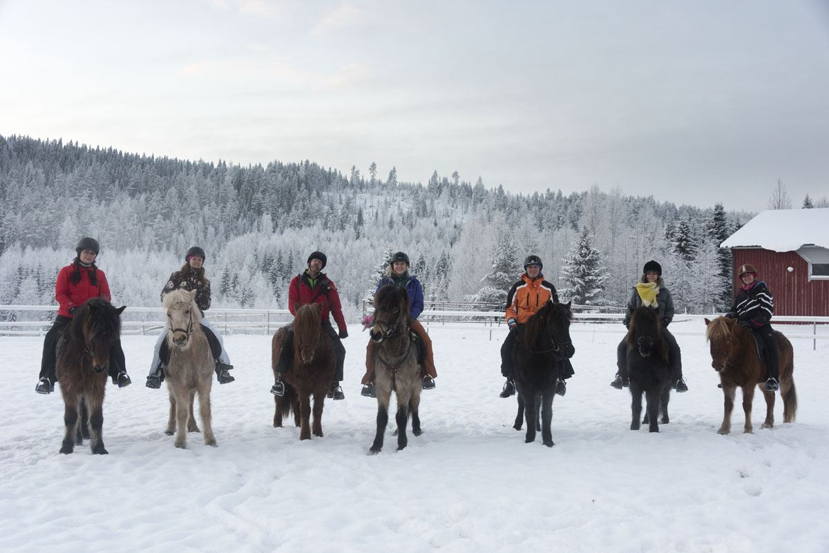 horseriding finland NBE group