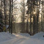 What to Do in Helsinki in Winter