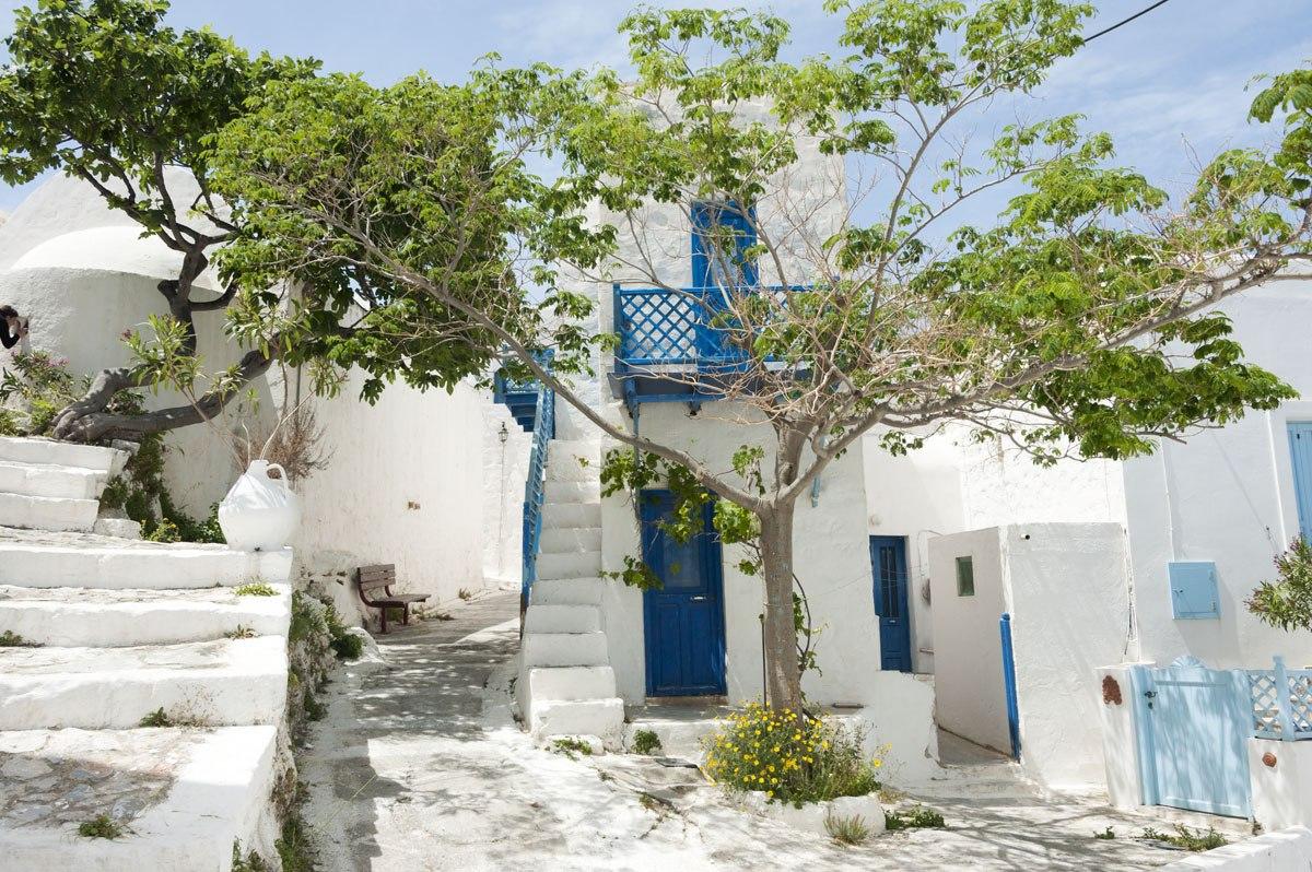 chora tree astypalea greek islands