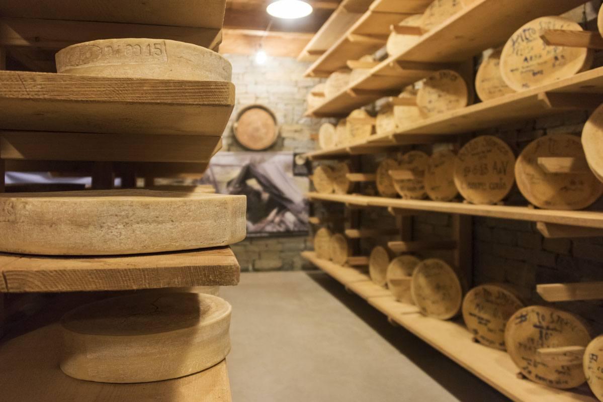 bitto cheese wheels valgerola cellar