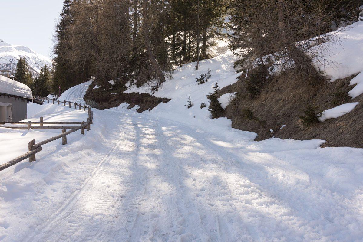snowy path italy valtellina