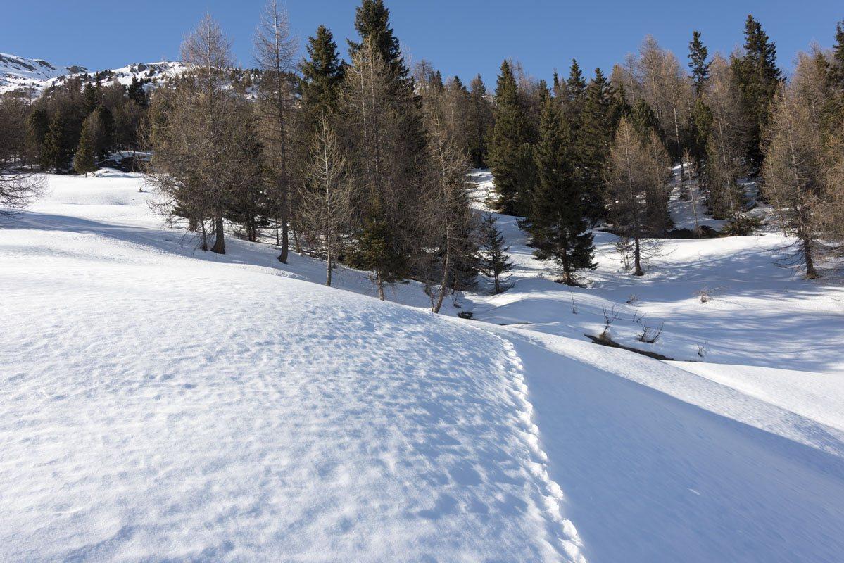snowshoeing italian alps