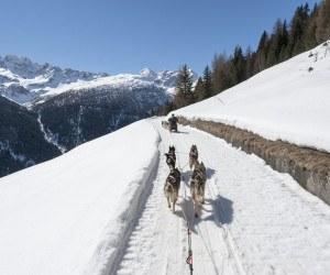 valtellina italy dog sledding