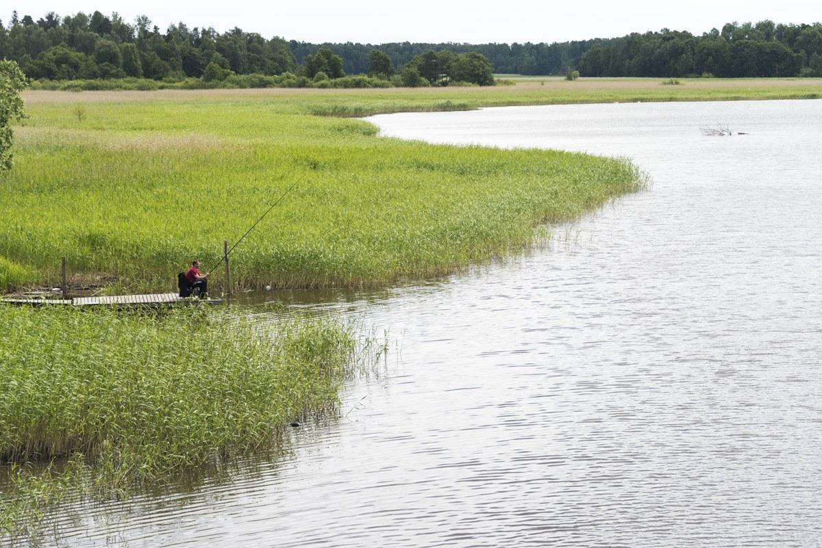 fisherman lammasaari