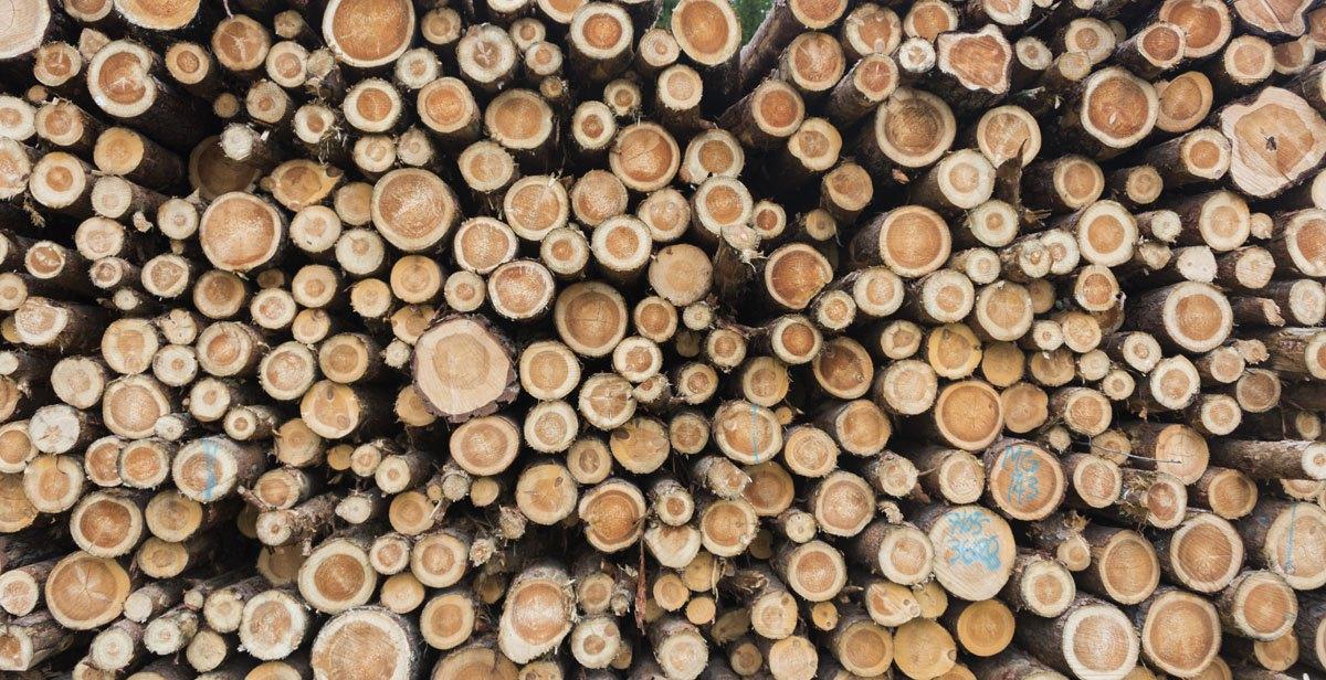 logs-finland
