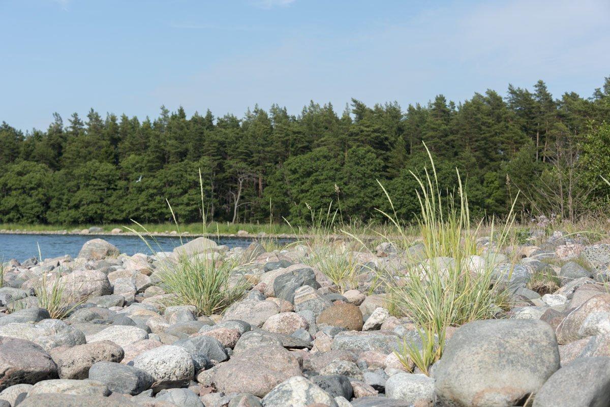 finland archipelago beach hogsara rocks