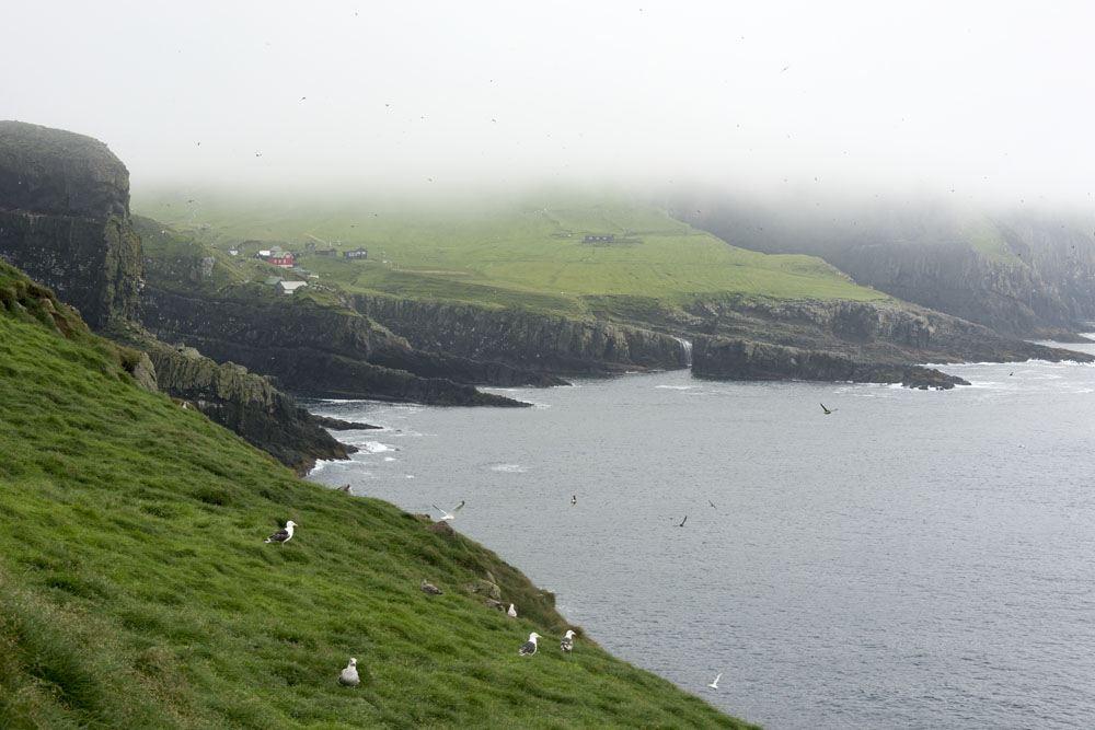mykines faroe islands fog