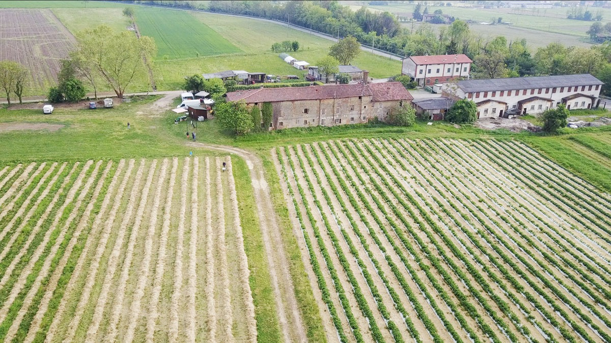 farm aerial