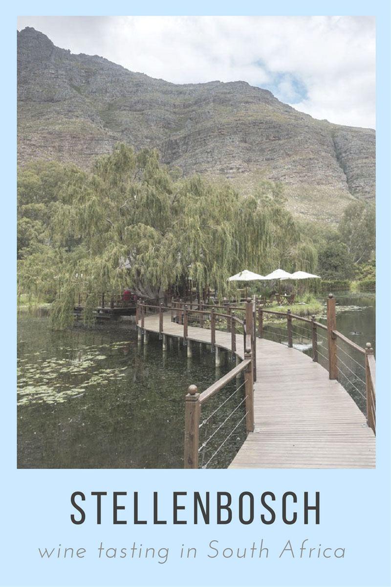 Stellenbosch - where to drink wine in South Africa!