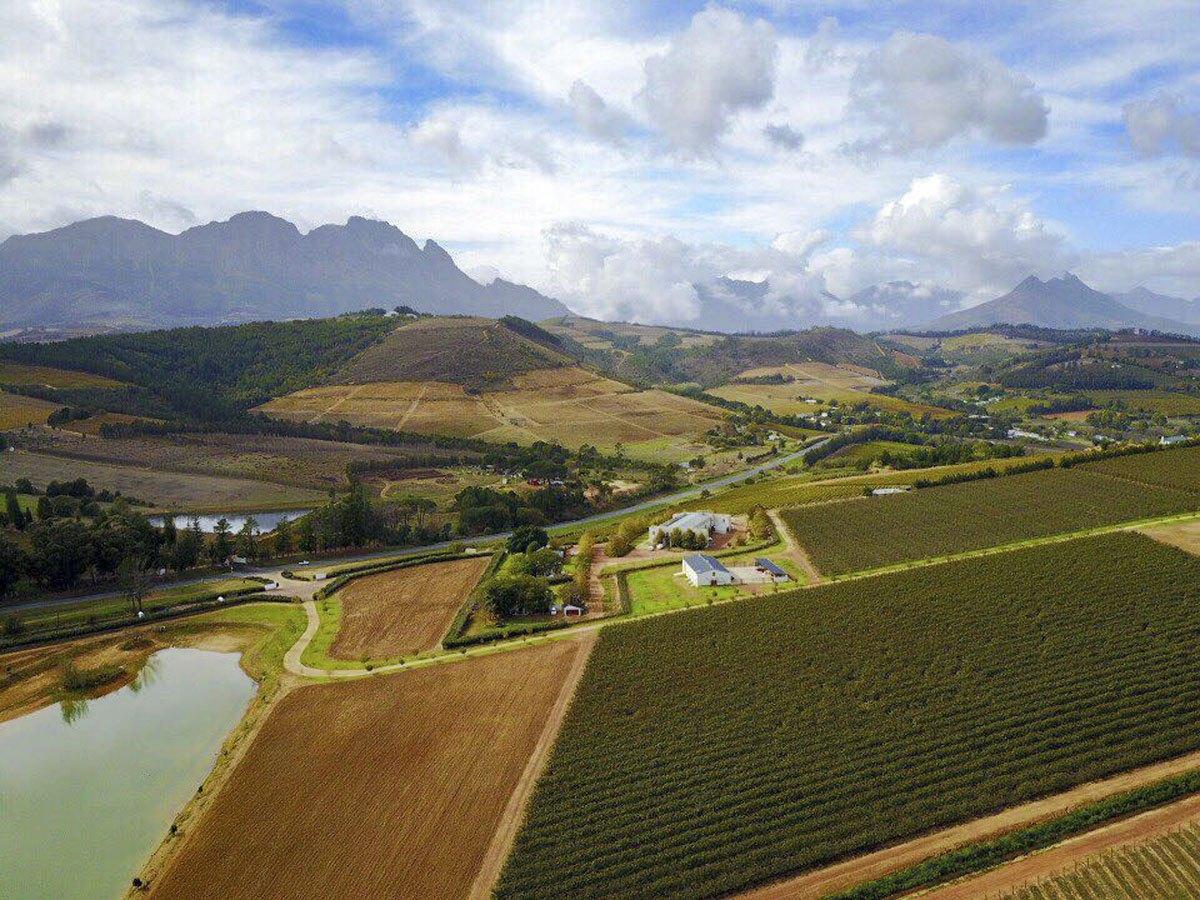 visit stellenbosch aerial