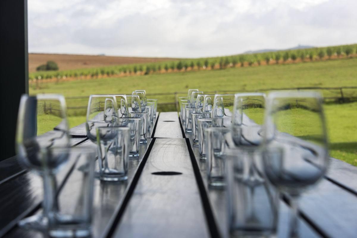 visit stellenbosch wine glasses