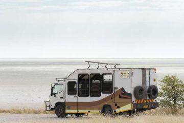 overlanding namibia safari wild dog