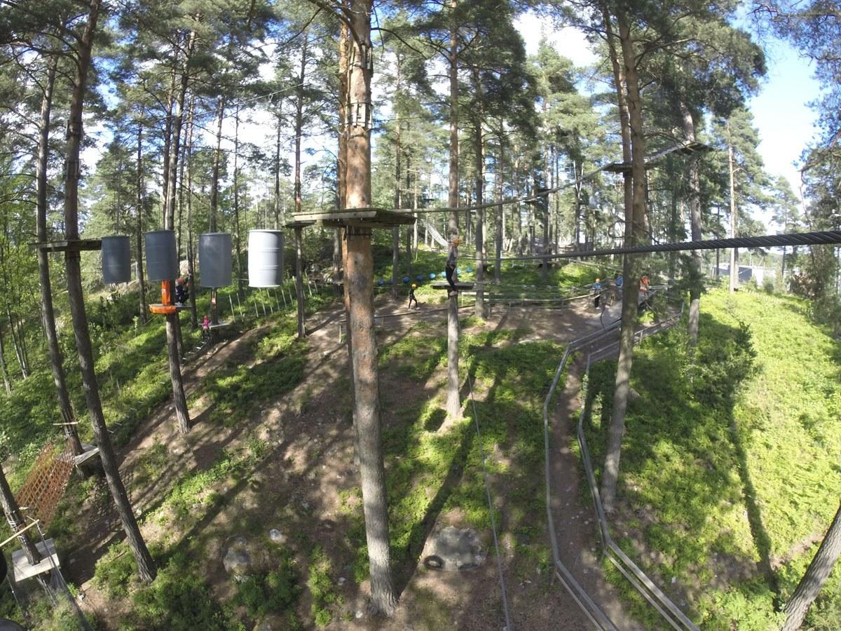 flowpark turku tree view