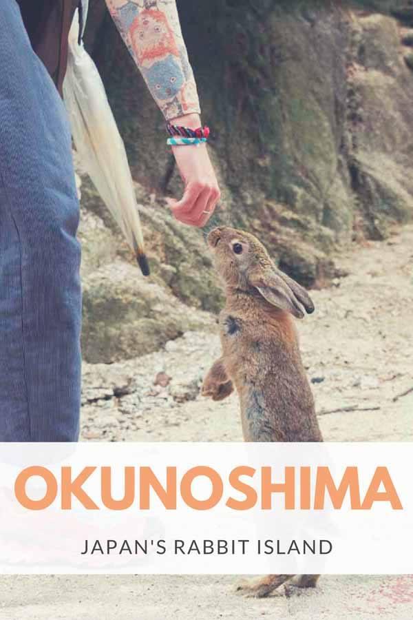 okunoshima pin
