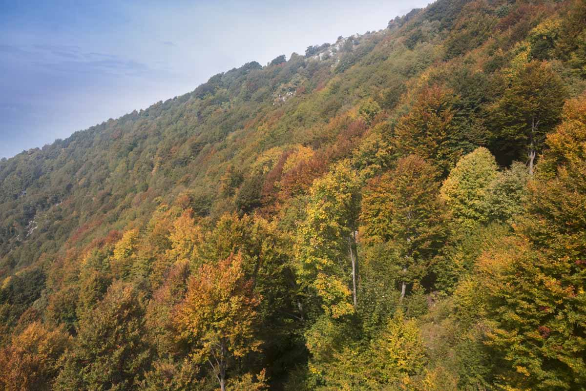 autumn colors monte baldo