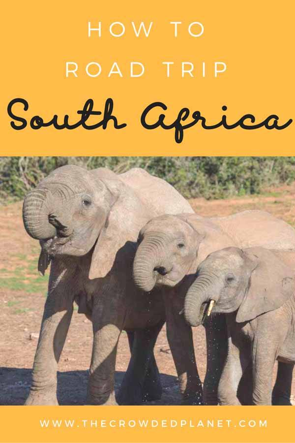 south africa itinerary pin