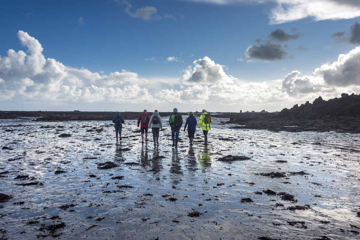 low tide walk jersey