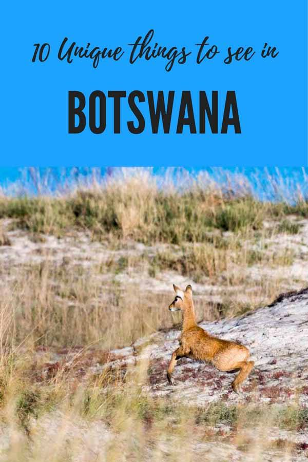travel itinerary botswana pin