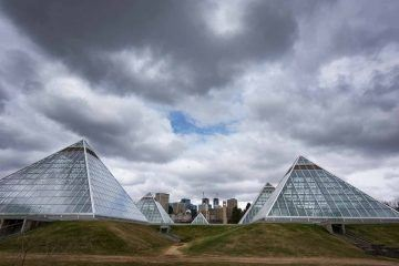 things to do in edmonton muttart conservatory