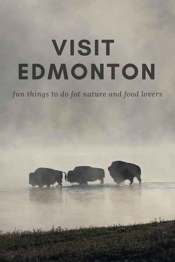 visit edmonton pin