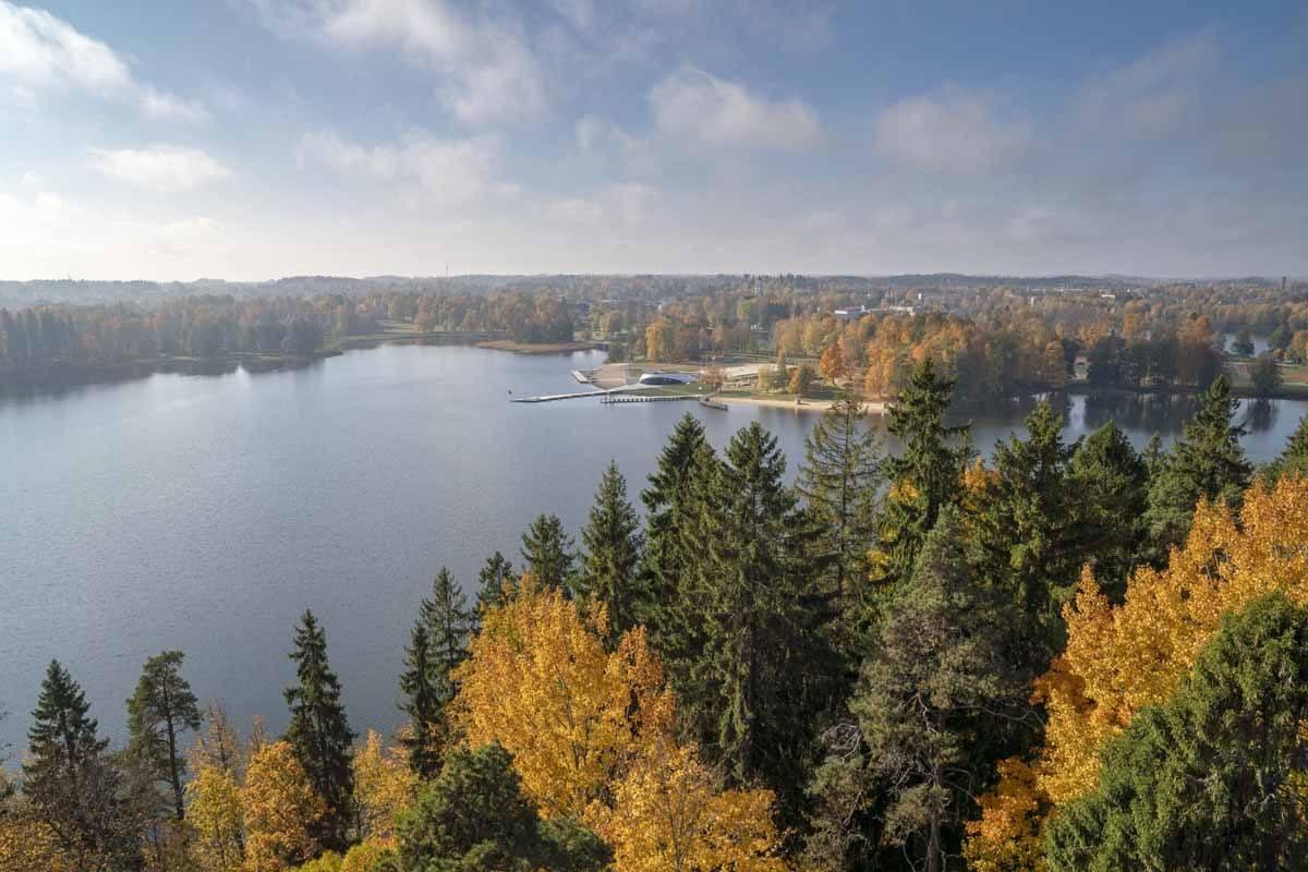 colourful trees lake aluksne