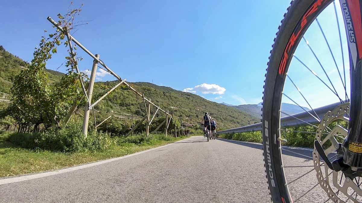 lake garda mountain bike wheel