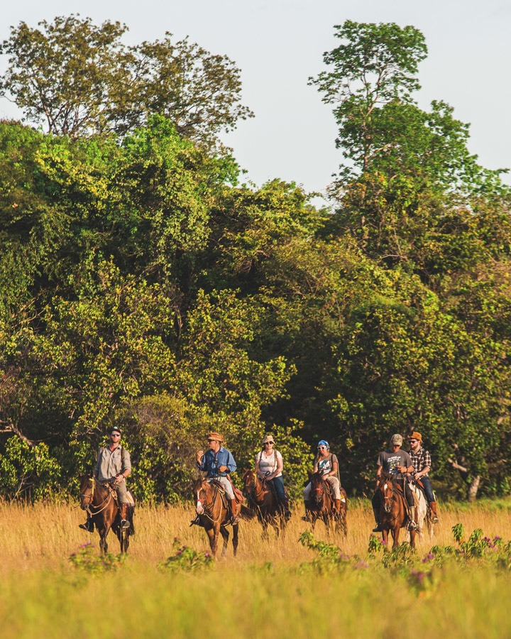 horse riding guyana group