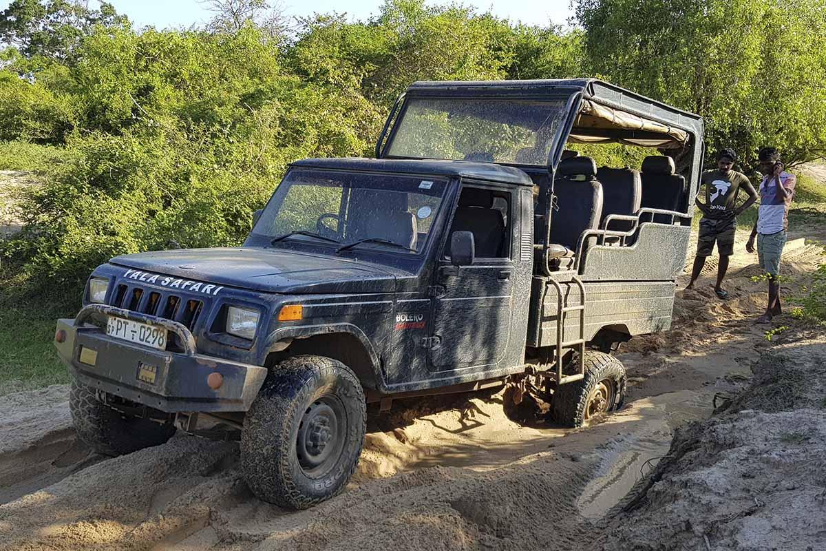 yala national park jeep