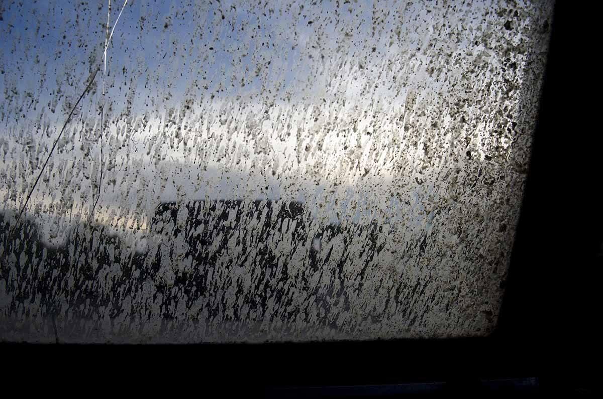yala sri lanka dirty window