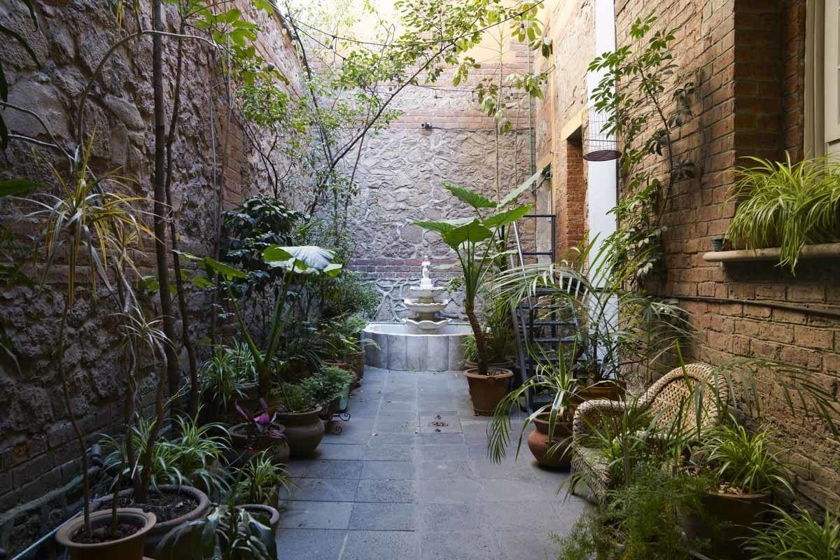 mexico city el patio 77 courtyard