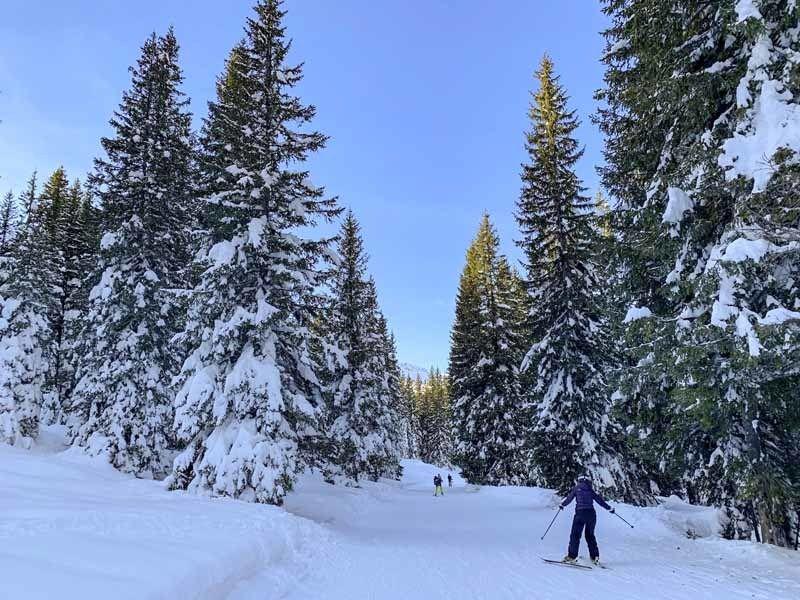 skiing madonna di campiglio