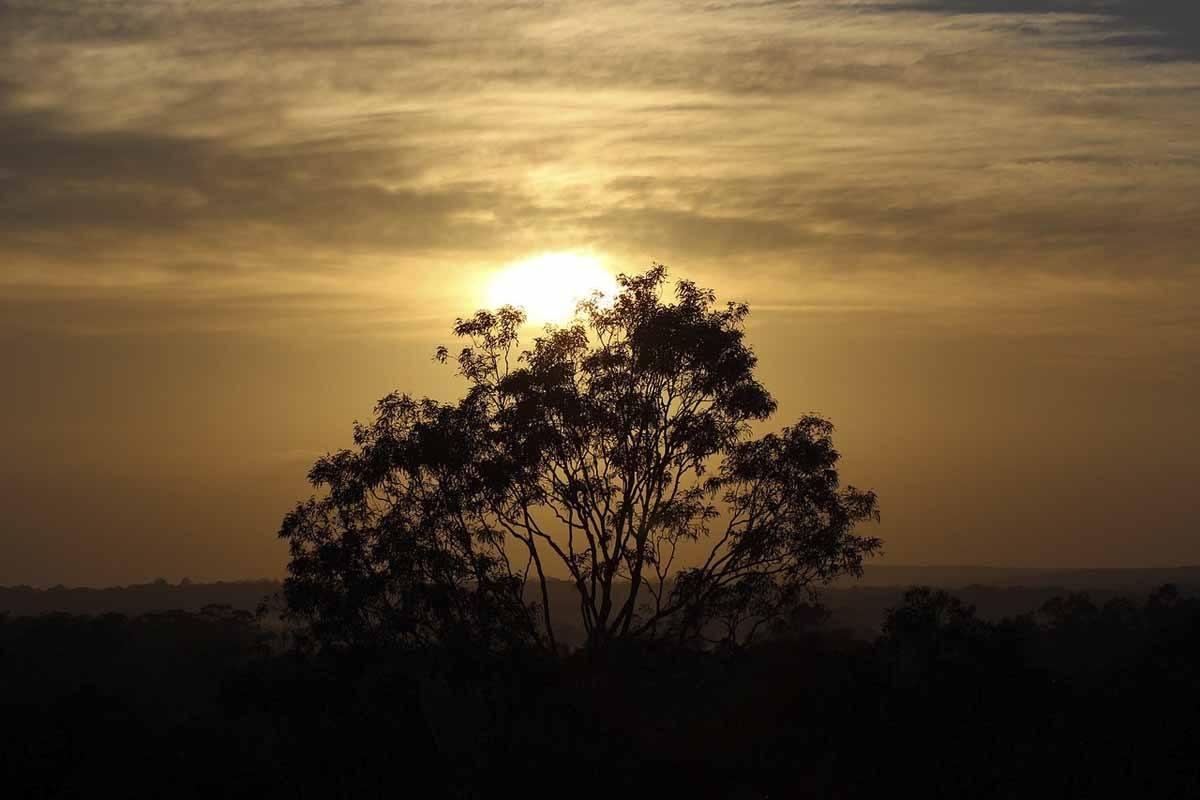 hunter-valley-sunset