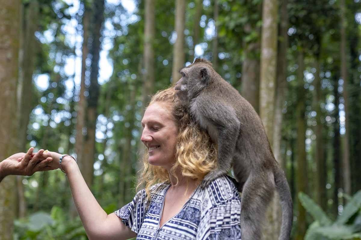 Our friend janet at Sangeh Monkey Forest