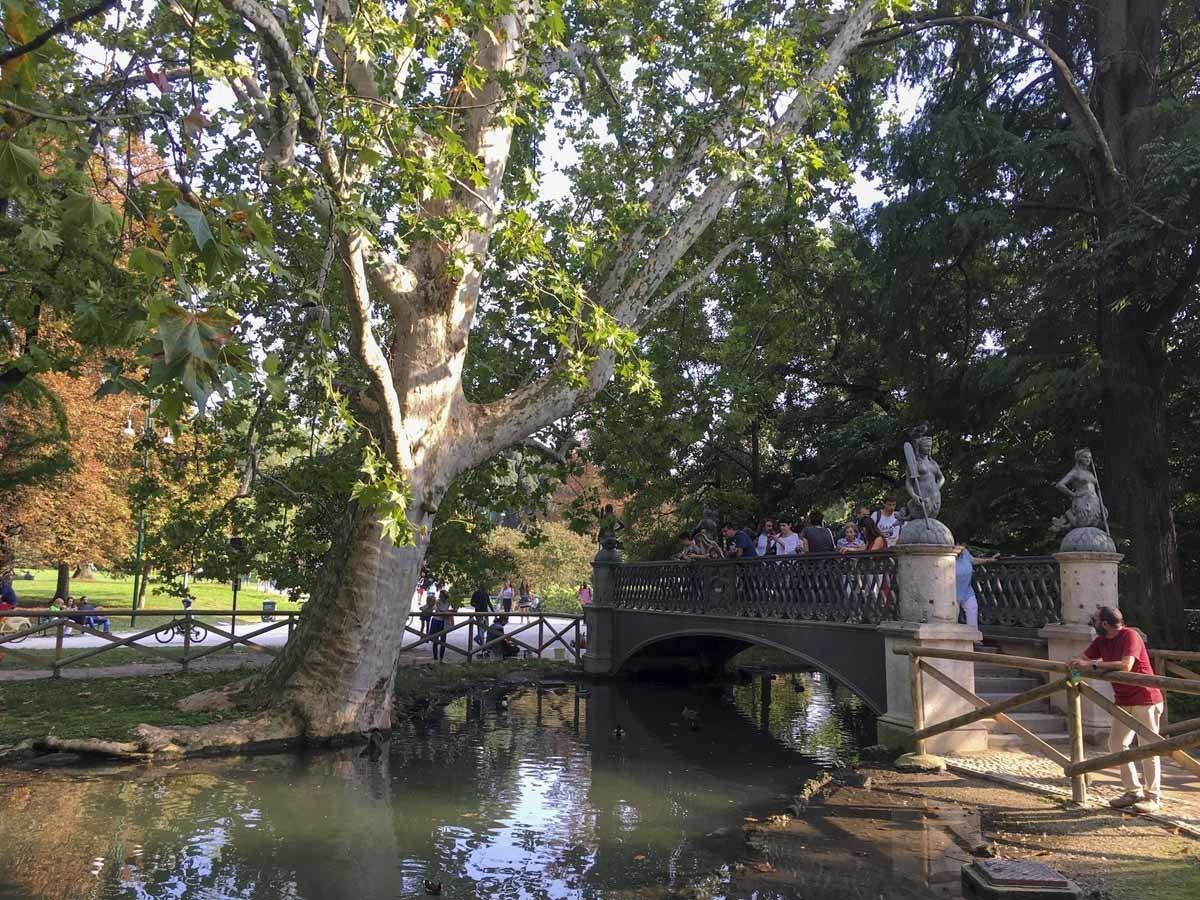 mermaid bridge parco sempione