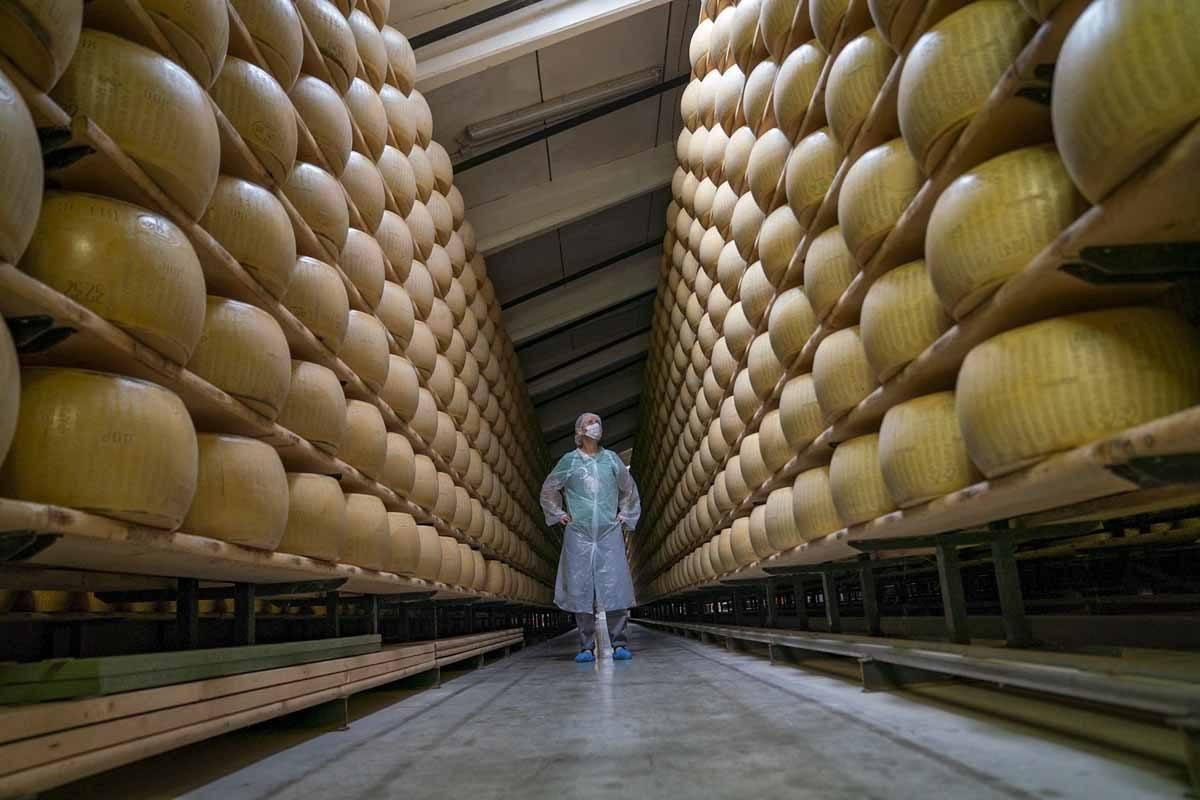 parmigiano reggiano factory cheese
