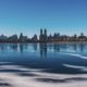 new york city in winter central park