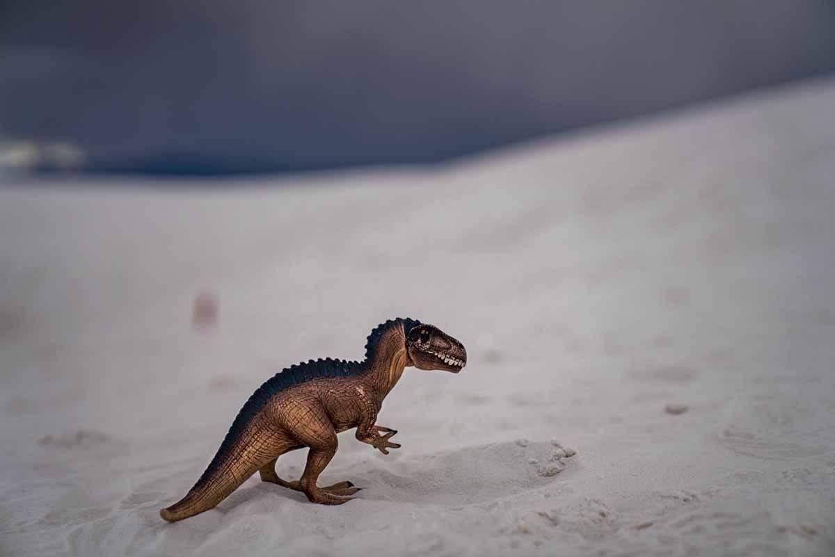 dinosaur white sands new mexico